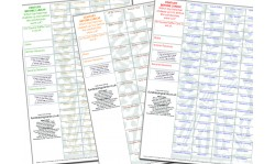 10 x A4 `Century Before Lunch` Cricket Fundraising Raffle Ticket / Draw Cards / Scratchcards
