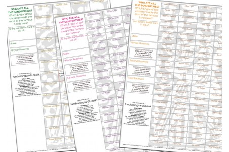 10 x A4 `Who Ate All The Sandwiches` Cricket Fundraising Raffle Ticket / Draw Cards / Scratchcards