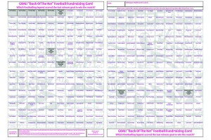 1 x A2 `Back Of The Net` Football Fundraising Raffle Ticket / Draw Cards / Scratchcards