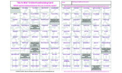 10 x A3 `Six To Win` Cricket Fundraising Raffle Ticket / Draw Cards / Scratchcards
