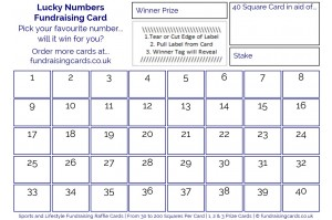 24 x A6 `Lucky Numbers` Fundraising Cards / Raffle Ticket / Scratchcards Value Pack
