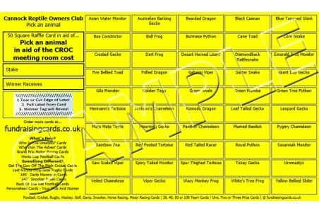 10 x `Personalised For You` Fundraising Raffle Ticket / Draw Cards